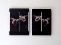 https://www.piotbrehmer.de/files/gimgs/th-110_bee-sting-version.jpg